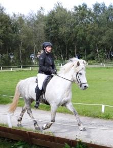 4_Horses_10I3762 small