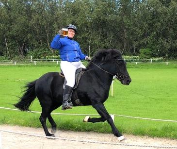 4_HorsesIMG_1164 small